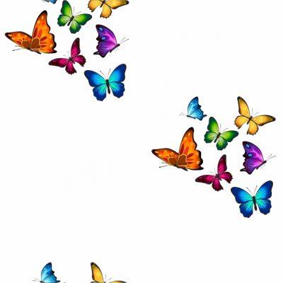 Mariposas – Blanco